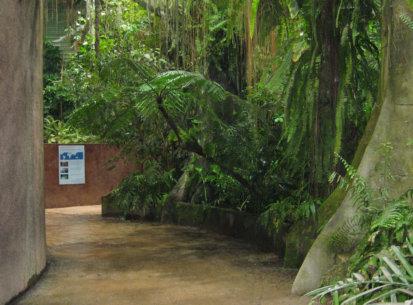 Serre tropicale d'Océanopolis