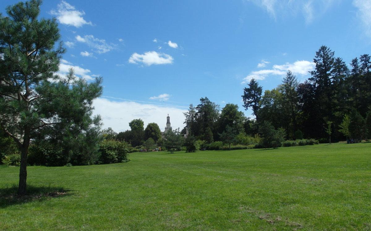Jardin Anglais coté prairie