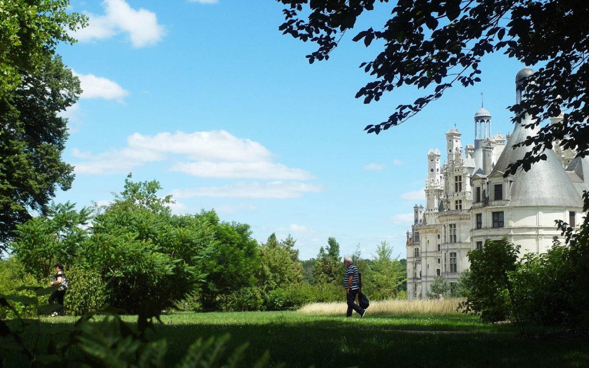 Sous bois Jardin Anglais du château de Chambord