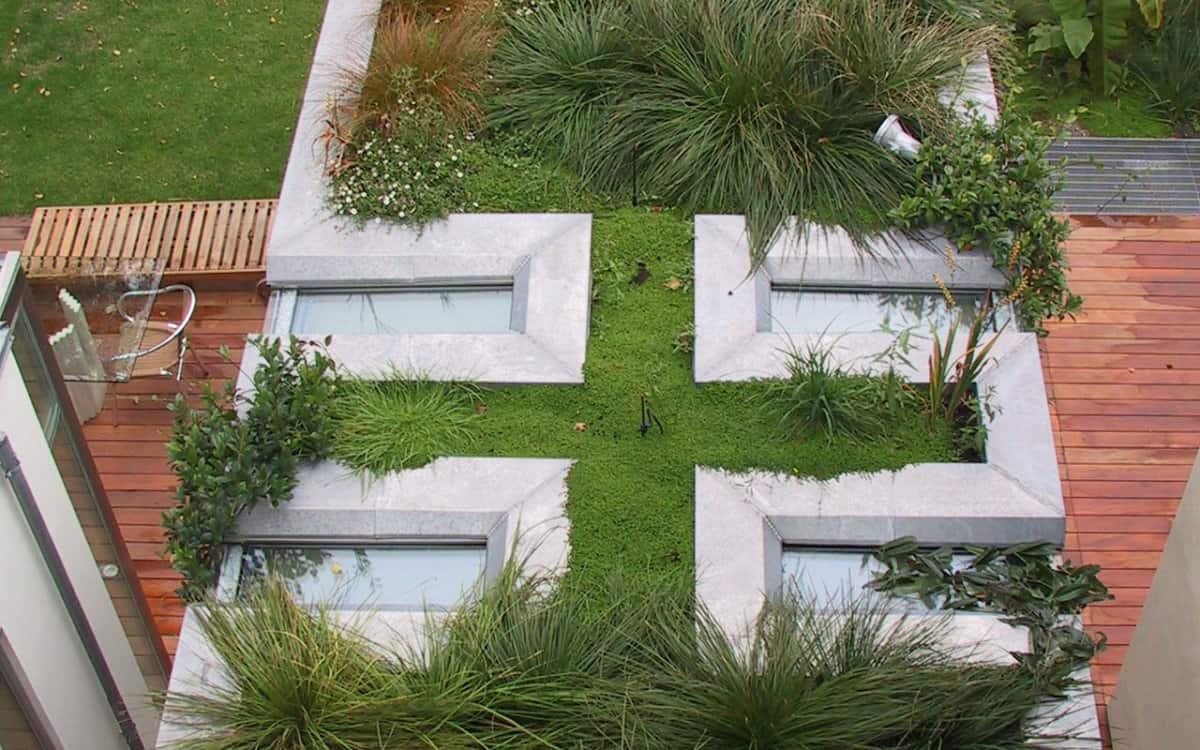 Jardin tropical : Fontainebleau