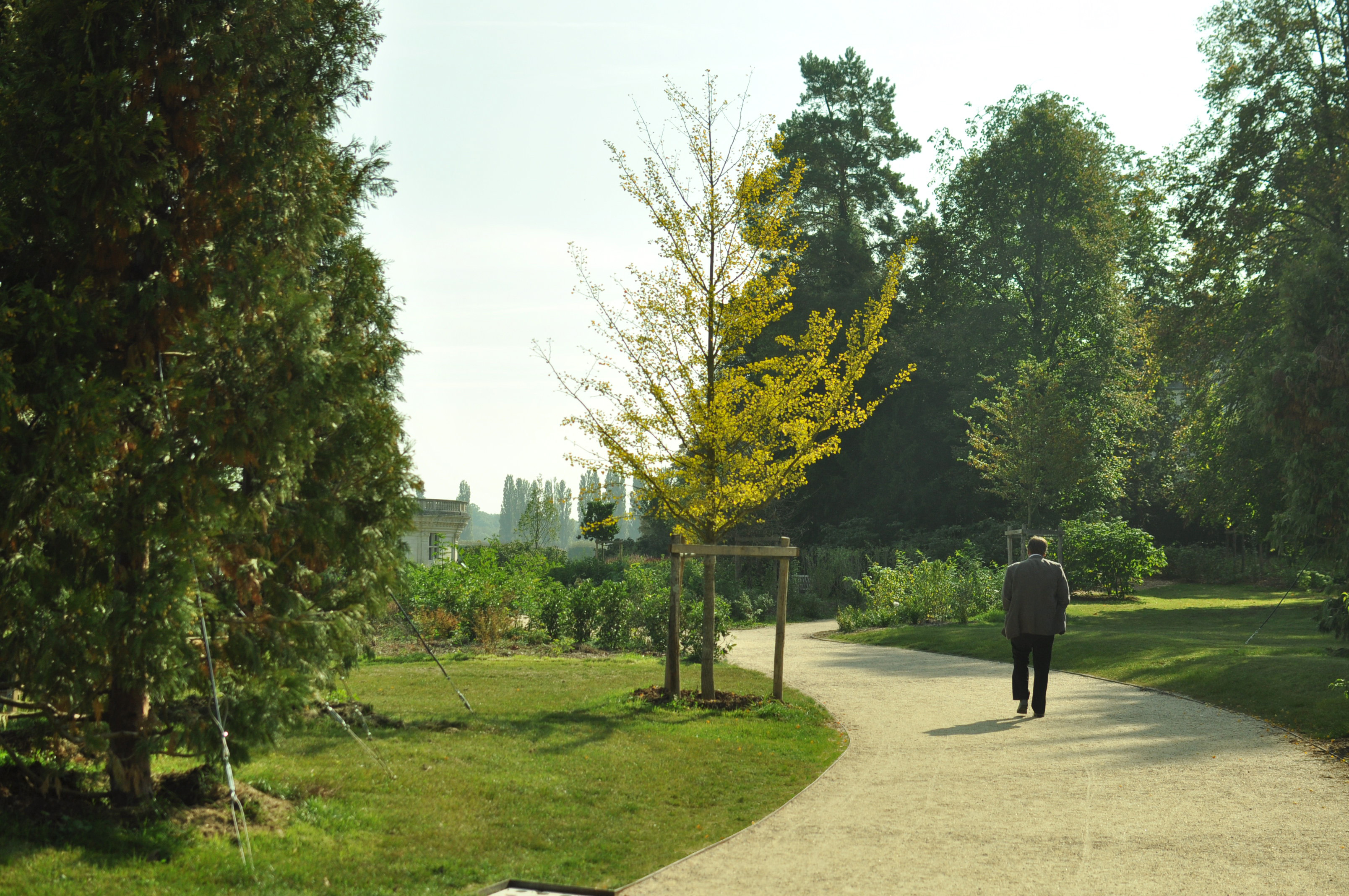 Jardin anglais chambord thierry jourd 39 heuil architecte for Jardin anglais vegetaux
